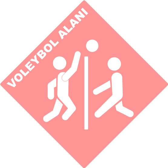 VOLEYBOL ALANI